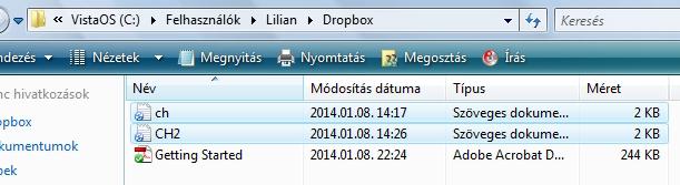 dropbox-telepites-08